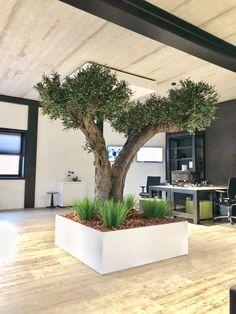 Kunstboom met echte stam en hoogwaardige kunsttakken. Plants, Plant, Planets