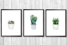 Cactus set. Set of 3 prints. Cactus Watercolor. Succulent artwork. Plant art. Botanical set. Cactus print. Southwestern Art. Kitchen Decor.