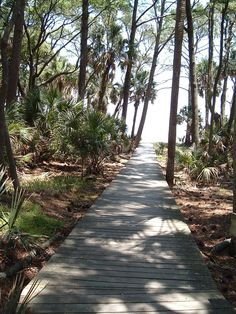 this is the boardwalk I used to walk through to the beach with my fam... so weird that is a random picture on pinterest!!! #memories