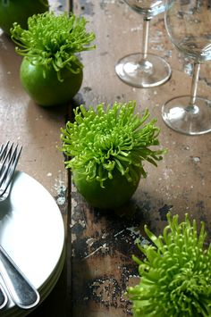 DIY Apple Bombs by cfabbridesigns: Acid green Spider Mums are placed in green apple vases for an explosive centerpiece. DIY Apple Bombs by cfabbridesigns: Acid green Spider… Apple Centerpieces, Apple Decorations, Centrepieces, Thanksgiving Centerpieces, Summer Centerpieces, Centerpiece Ideas, Flower Centerpieces, Cheap Table Decorations, Centerpiece Wedding