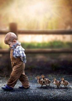 Kid and his ducklings
