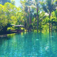 Kayumanis Ubud Private Villas & Spa Bali Indonesia @KayumanisResort - like it if you believe our #earthisstunning   --------------------------- #earth #earthisbeautiful #earthpix #earthphoto #earthlover #earthescape #earthcapture #photograph #photooftheday