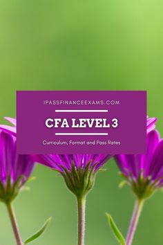 #CFAexam level 3 is the last hurdle you'll have to jump! Check our all you need to know from the curriculum to pass rates and more! #CFA #testprep #accounting Exam Study Tips, Exams Tips, Chartered Financial Analyst, Official Letter, Constructed Response, Portfolio Management, Level 3, Test Prep, Economics