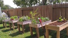 Counter Height Garden Boxes 2 feet x 4 feet - Easy, cheap, and great on your back!
