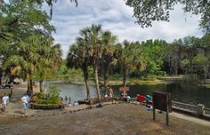 Juniper springs and florida traveler websiteweb site