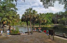Juniper springs and florida traveler websiteweb site