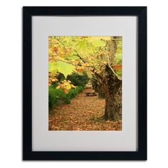 Autumn by Beata Czyzowska Young Matted Framed Photographic Print