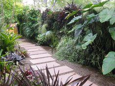 Green Wall - contemporary - landscape - san diego - Amelia B. Lima & Associates