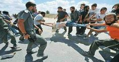 Israelis torture and murder the children of Palestine with our Americans monwy.