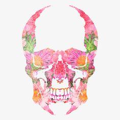 18 Insanely Cool Art Prints to Help You Start a Gallery Wall Zealand Tattoo, Watercolor Paintings For Beginners, Skull Illustration, Pink Skull, Skulls And Roses, Flower Skull, Airbrush Art, Skull Art, Cat Skull