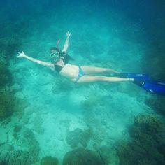 I'm a mermaid!  #greatbarrierreef #oceanfreedom #exploreTNQ #cairns #adventureqld #travelgram #instatravel #travelwithpapino #backpackersworld by travelwithpapino http://ift.tt/1UokkV2