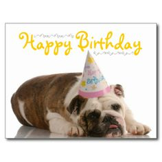 >>>Cheap Price Guarantee          Funny Bulldog Birthday Postcard           Funny Bulldog Birthday Postcard We provide you all shopping site and all informations in our go to store link. You will see low prices onShopping          Funny Bulldog Birthday Postcard Here a great deal...Cleck Hot Deals >>> http://www.zazzle.com/funny_bulldog_birthday_postcard-239504710520863073?rf=238627982471231924&zbar=1&tc=terrest