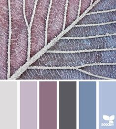 { frosted tones } | fresh hues | color + inspiration
