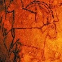 Black outlined drawing of Ibex on Le Grand Plafond, Rouffignac Cave. In Ancient Times, Ancient Ruins, Ancient Artifacts, Art Pariétal, Paleolithic Art, Art Rupestre, Human Art, Rock Art, Archaeology