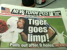 Post with 3374 votes and 6678 views. I'll see your funny tiger woods pun, and raise you THIS Funny Headlines, Newspaper Headlines, Thats The Way, That Way, Funny Photos, Funny Images, Silly Photos, Funny Tiger, Funny Jokes For Adults