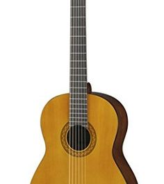 GUITAR ELECTRICS on Pinterest | Electric Guitars, Coyotes and Guitar