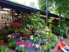 Paris Markets, Plants, Plant, Planets