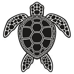 Green Sea Turtle Design - Black | Kids Clothes