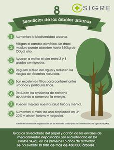 #Beneficios de los #árboles urbanos