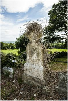 Old Burial Ground, Photo by Monika Lauber Location: County Kerry, Ireland