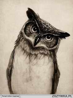 Owl.  This would make an awesome tattoo.