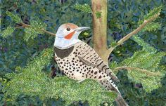"""""""Flicker in a Fir"""" by Catherine Imo at Forsythea."""