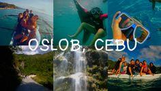 3 Days and 2 Nights Budget DIY Itinerary to Oslob, Cebu Bohol