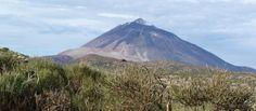 Trek NP Las Cañadas