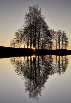 Amazing Snaps: Perfect Reflection !!!!