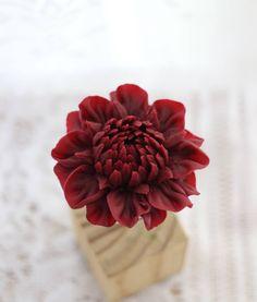수업 후 남은 앙금으로  자유시간 즐기기~^^ #대구플라워케이크 #대구꽃배움반 #대구앙금플라워 #대구앙금꽃배움반 #대구앙금플라워떡케이크 #플라워케이크 #flower #flowers #flowercake #작약 #beanflower #atelierryeo #떡케이크 #대구플라워케익 #캐논100d #캐논사진 #홍화 #앙금플라워떡케이크 #양귀비 #앙금레이스 #フラワーケーキ #花蛋糕 #대구앙금오브제 #naturalpowder #앙금도일리레이스 #2단케이크 #koreacake #koreaflowercake #다알리아 #앙금오브제