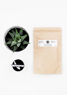 Thanaka & Pearl Powders | Organic Beauty Blogger