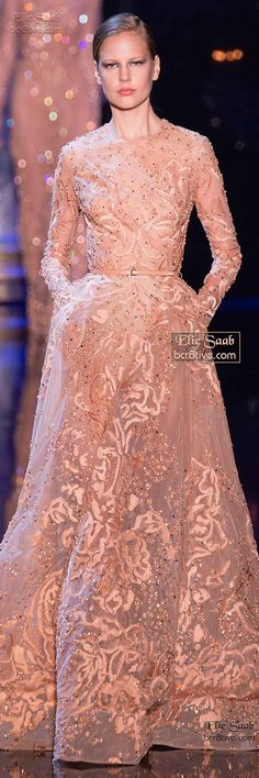 Elie Saab Fall Winter 2014-15 Haute Couture jaglady