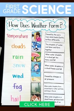 This first grade science curriculum contains science experiments lesson plans activities books and more. Unit Weather teaches about weather systems clouds precipitation climate and more! First Grade Curriculum, First Grade Lessons, 1st Grade Science, First Grade Activities, First Grade Classroom, School Lessons, Homeschool Curriculum, Homeschooling First Grade, First Grade Freebies