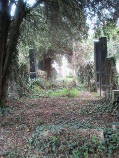 Zentralfriedhof Vienna, Old Jewish Cemetery