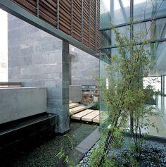 146 Best water garden images   Gardens, Backyard patio, Backyard ponds