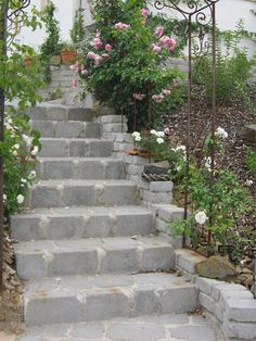 Geschwungener Treppenaufgang umsäumt von Pflastersteinen. Verwendet wurde Lanhstein hochkant als Stufenkante. #pflaster #pflastersteine #treppe  #lahnstein Sidewalk, Blog, Garden Paths, Paving Slabs, Pretty Pictures, Walkways, Blogging, Pavement, Curb Appeal