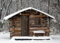 easy diy cabin | At first the goal was to clean up the woods and make it safer. After a ...