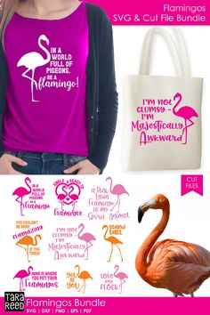 [Promotion] Crazy about flamingos? Then this is the svg and cut file bundle for you! Flamingo Craft, Flamingo Decor, Pink Flamingos, Commercial Use Fonts, Cricut Fonts, Everything Pink, Diy Arts And Crafts, Svg Cuts, Design Bundles