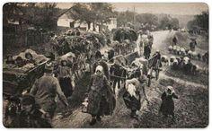 Heroes of Serbia - Memory Eternal