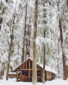 Let's run away together to a cabin in the woods we can.....
