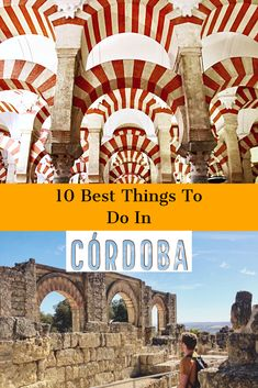 Cordoba is home to the world famous Mezquita, stunning courtyards, top festivals, and great bars and food. Discover the best things to do in Cordoba, Spain. Stuff To Do, Things To Do, Good Things, Cordoba Spain, Tourist Office, Plant Species, Moorish, Andalucia, Spain Travel