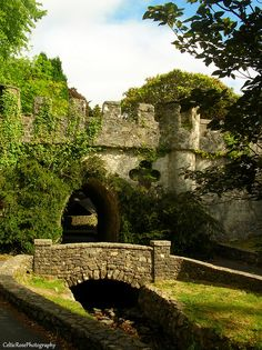 The bridge at Tollymore Newcastle, Northern Ireland