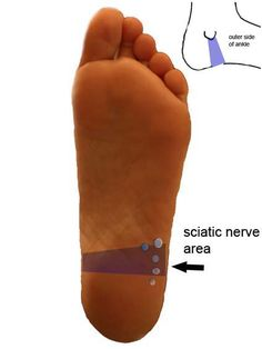 Reflexology Points for Sciatica I find using reflexology points along with applying essential oils to be very effective.