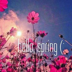 Happy 1st Day of Spring from Bella Medispa! #september #spring #bellamedispa #kealbaspa #kealba #like4like #followforfollow