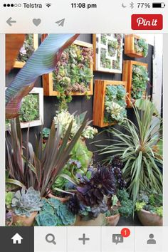 Easy-Vertical-Gardening-Ideas - to disguise my ugly fence