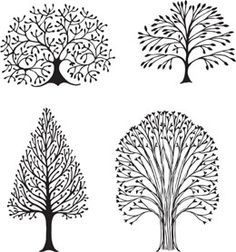 Step by Step Instructions to Draw a Tree