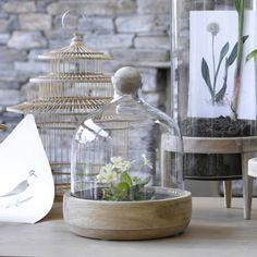Comment réaliser vous-même un terrarium esthétique et créatif ? #pourchezmoi