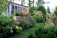The house is framed by sturdy flowering plants such as hydrangea and coneflower.