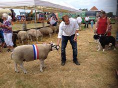 Landbouwdag Den Hoorn
