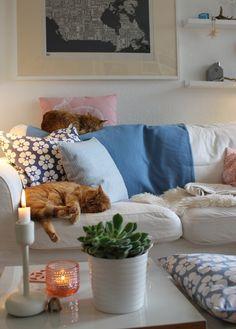 #interior #inspiration #decoration #kaktus #kakteenfamilie #urbanjungle #design #home #pflanzen #sukkulente #cats #livingroom